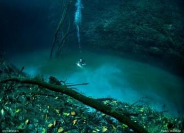 berenang di sungai bawah laut